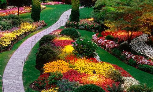 Landscape design tampa fl arbor tree care for Landscape design tampa
